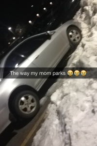 Find a huge pile of snow and park in it why not!