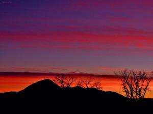 Colorado Orange and Blue Sky!